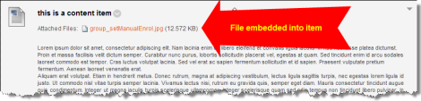 Screenshot of file embedded into Content item
