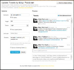 Screen shot of the twitter Widget options.