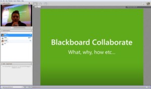 Screenshot of BB collaborate interface