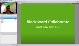 Screenshot of BB collaborate interface