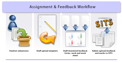 Assignment and feedback workflow