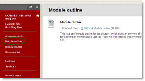 Screenshot showing a Module outline link in the left menu and a content area with a single content item linking to the module outline document