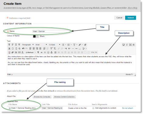 Screenshot showing an Item Edit Form. The Title field appears at the top, followed by a full text editor and the attachments at the bottom