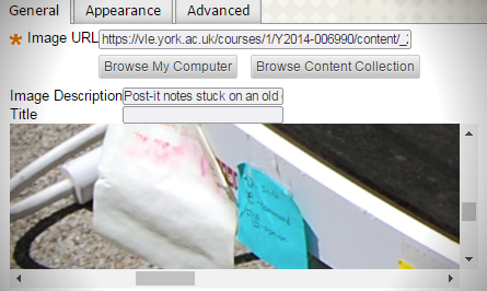 Screenshot of the add image popup for the Blackboard text editor with an example text description provided