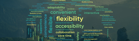 "Word cloud of responses from 51 students in the Management School to the question ""What advantages can online learning offer"" Prominent key words are flexibility, convenience, accessibility, adaptability, time-saving and collaboration"